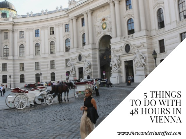 5 Things to Do in Vienna