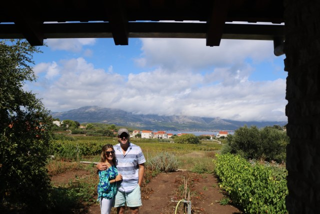 Vineyards, Korcula Island, Croatia