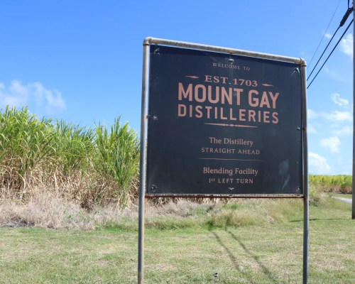 Visiting the Mount Gay Distillery, Barbados