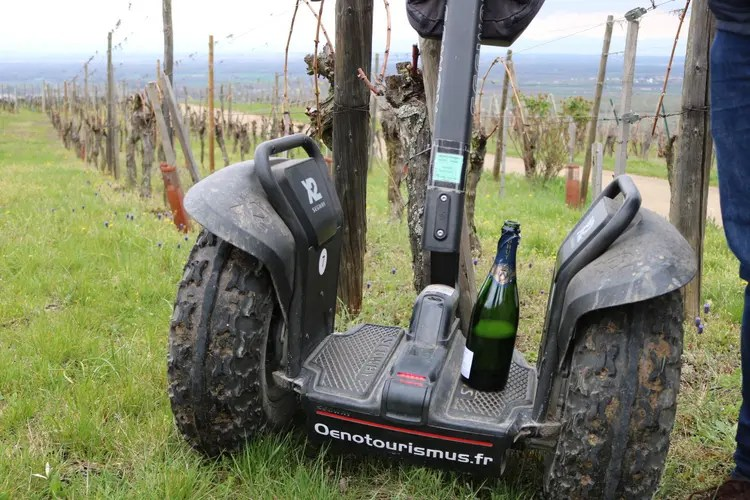 Segway Tour in Alsace