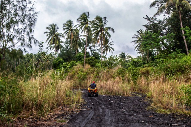 person quad biking to mayon volcano with palm trees on either side in legazpi philippines