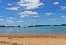 Main Beach in Paihia