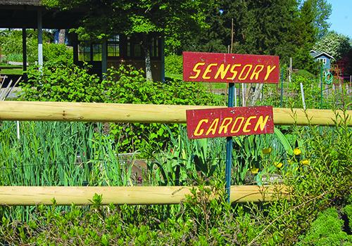 Garden 1 color - c