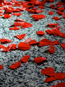 Poppy petals, Remembrance Day