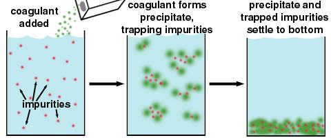 Process of Coagulation