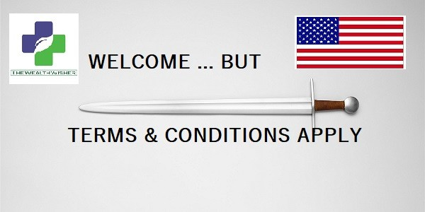 Understanding Build America Visa