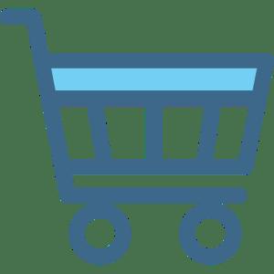Ecommerce Website the web design company