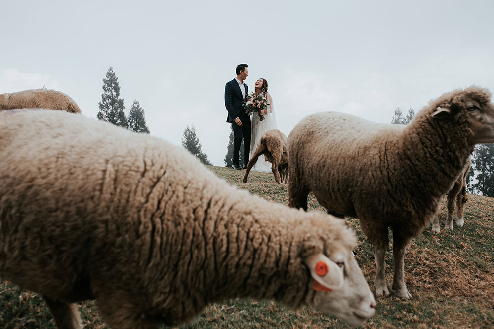 Photo by pixioo. www.theweddingnotebook.com