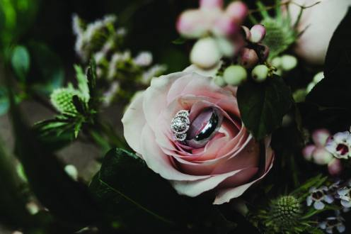 wedding and engagement rings in a rose at cambridge butterfly conservatory