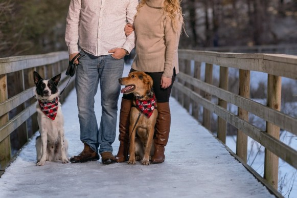 hayley and jason's love story snowy winter engagement with dogs Wedding photography A Nash Photogra