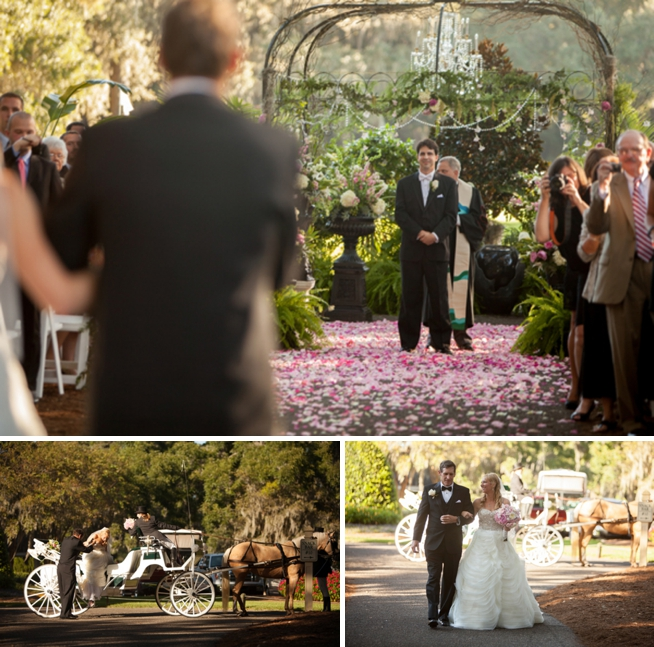 The Wedding Row  Erin  Rodney Caledonia Plantation