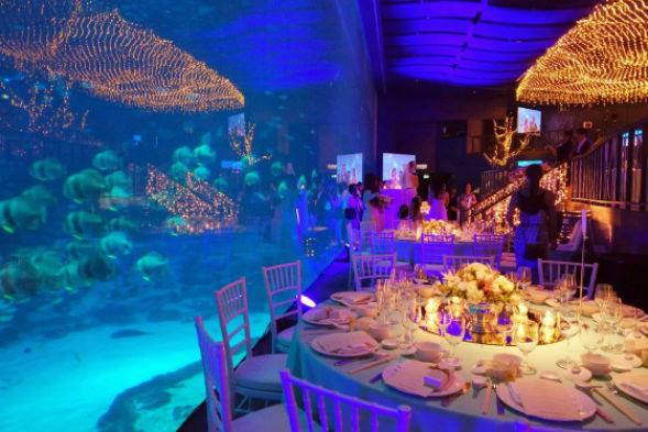 wedding venue singapore Ocean Gallery at the S.E.A Aquarium