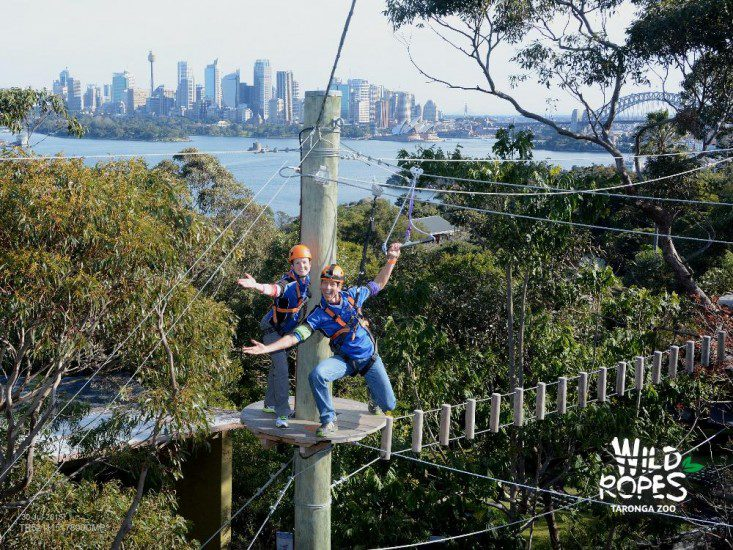 sydney-honeymoon-guide_wild-ropes