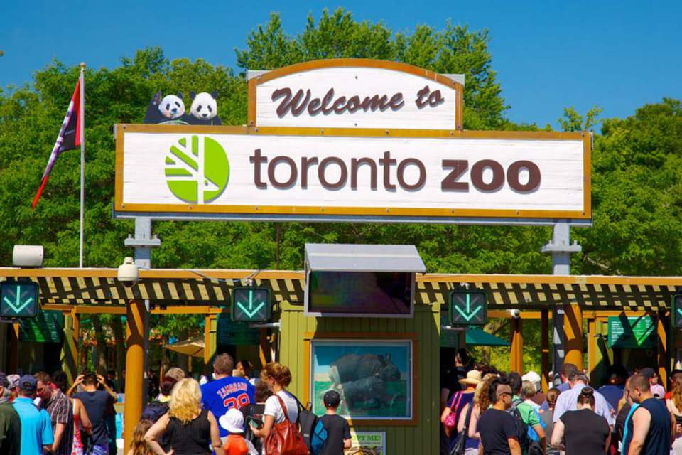 TorontoHoneymoon-torontozoo-Expedia