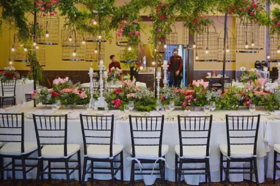 rent wedding chairs - Windsor & Tiffany - Instagram