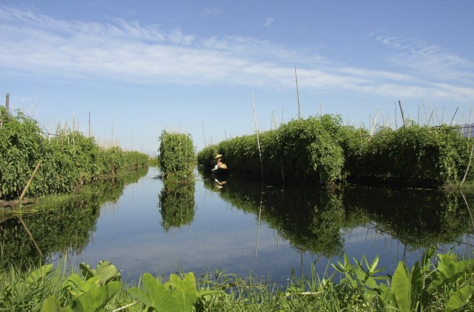 Myanmar Honeymoon - Inle Lake Floating Garden - Andre Lettau