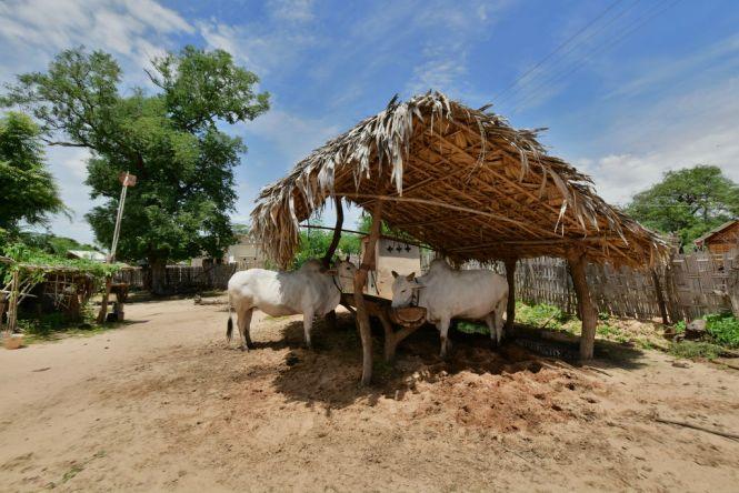 Minnanthu Village