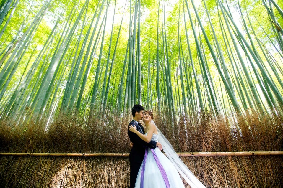 japan photoshoot location sagano bamboo forest