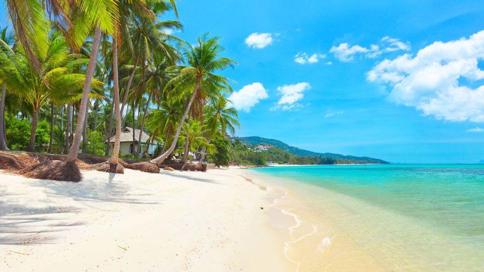 best honeymon destination koh samui thailand