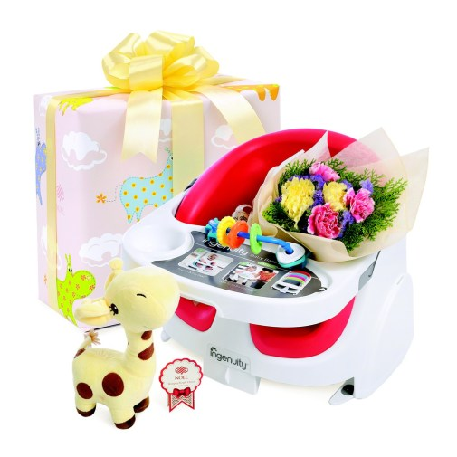 NoelGifts.com – Booster Seat baby hamper singapore