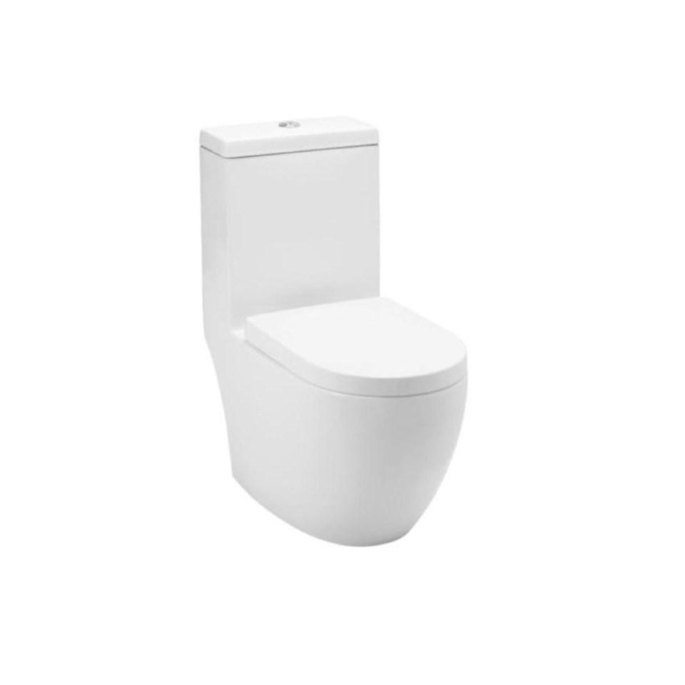 Baron water closet toilet bowl singapore