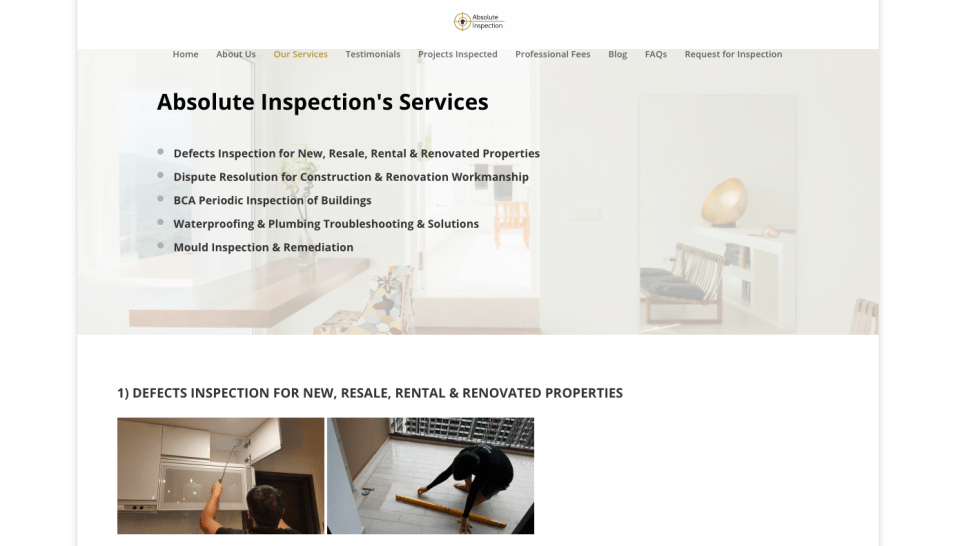 Absolute Inspection Defects Checking Singapore