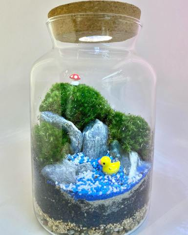 A Tilly A Day Best Terrarium Shops and Workshops Singapore