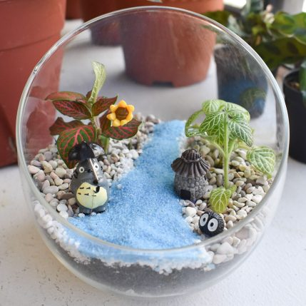 Crafts for Green Best Terrarium Shops and Workshops Singapore