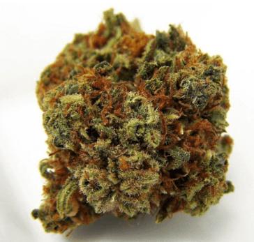 Cannabis-Strain-CBD