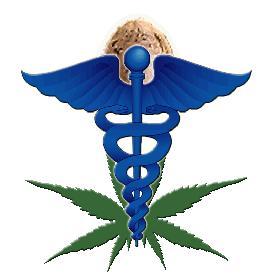 Marijuana Medicine Mind