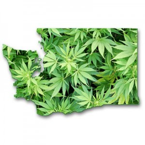 Washington State Marijuana