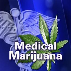 medical marijuana blog