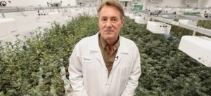 Joint Ventures: How growers are trying to stand out in the cannabis crowd