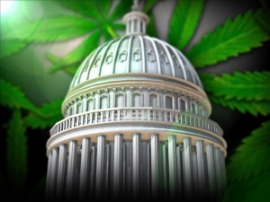 Weed Biz Owners Rally On Capitol Hill As Cannabis Bills Gain Momentum