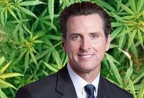 Cannabis community backs Newsom for California Governor