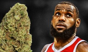 LeBron James now has a Weed Strain Named After Him