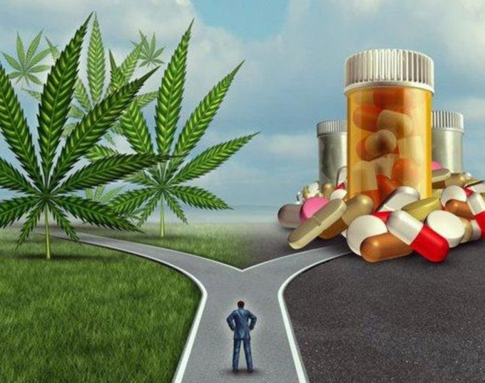 DEA Wants More Marijuana Grown And Fewer Opioids Produced In 2019. Really.