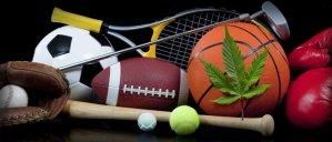 Cannabis and Sports are Getting Cozy