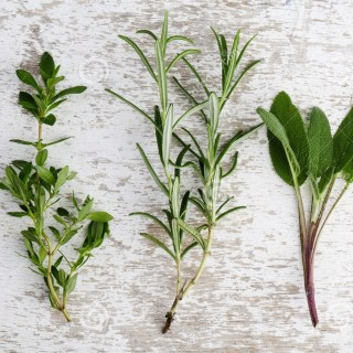 assorted-fresh-herbs-single-twigs-thyme-sage-rosemary-oregano-wooden-board
