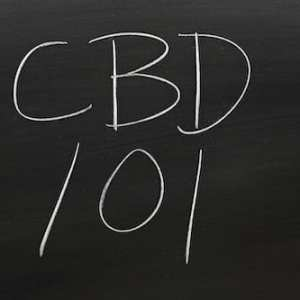 What Do You Want To Know About CBD CBD 101