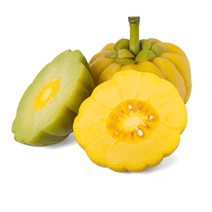 What Is Garcinia fruit extract