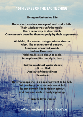 15th Verse of the Tao Te Ching - My Tao Year - Louise Bibby - The Wellness Quest