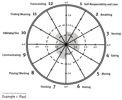Wellness Wheel Example 1: Paul