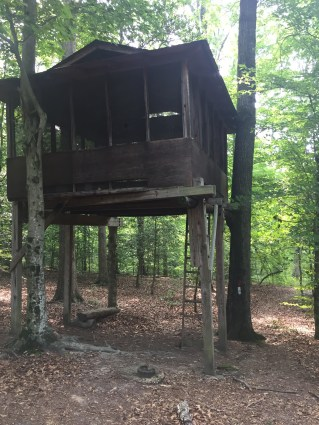 The treehouse in the woods that Abby's group hiked to and camped out in Thursday night