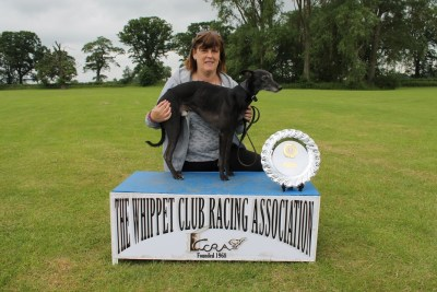 Markamy's Black Bentley on winners box