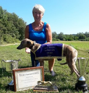 WCRA Annual Trophies - Winner Dog Superstars League 2017