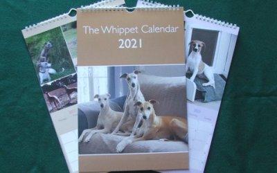 The Whippet Calendar 2021