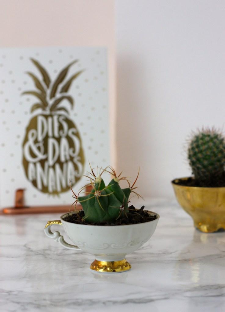 Wir bepflanzen uns die Welt, wie sie uns gefällt! | Mi-Mini