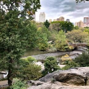 Central Park mit City