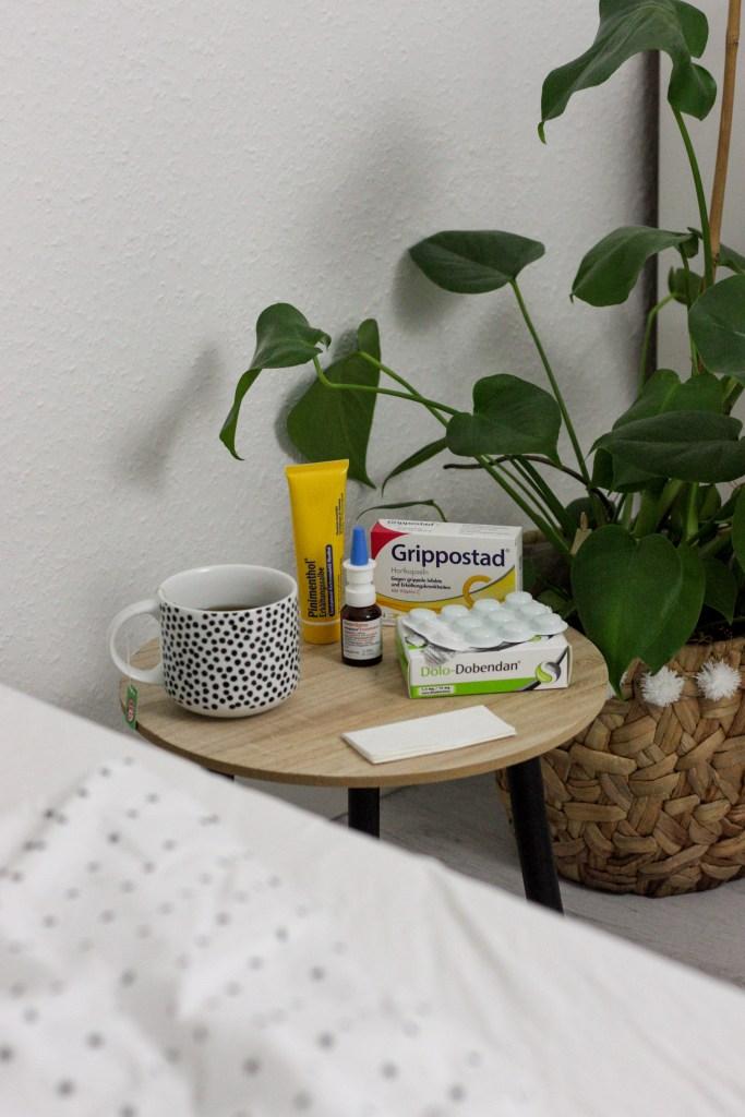 Erste Hilfe gegen fiese Viren! <br>Was tun wenn die Erkältung einen erwischt?